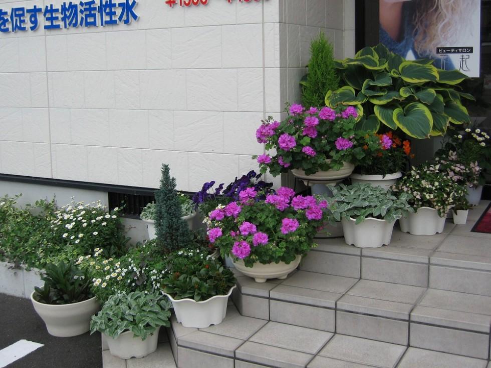 松山市 H様邸 画像7